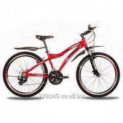 Bicycle Mountain Premier General TI-12602
