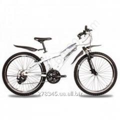Bicycle Mountain Premier General TI-12954