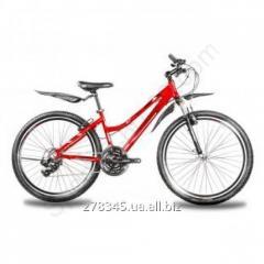 Bicycle Mountain Premier Rodeo TI-12956