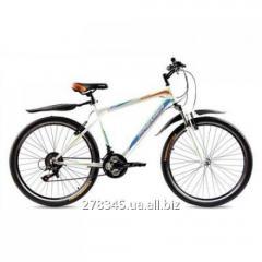 Bicycle Premier Vapor 19 14292 steel