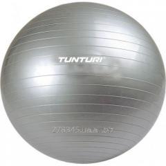 Ball gymnastic Tunturi Aerobic Gym Ball 11TUSFU026