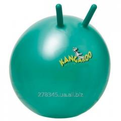 Ball for fitness of Togu Kangaroo ABS Super of 60