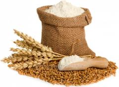 Dry wheaten gluten of gluten
