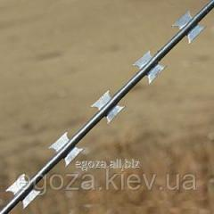 Barbed wire of Gyurz in one thread