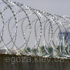 Barbed wire of ZKR of Kontsertin 600/7