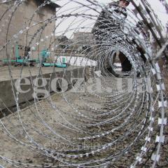 Колючая проволока Егоза Кобра двойная спираль 700+1250
