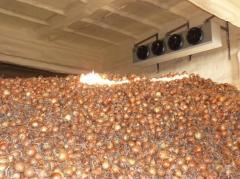 System of storage of vegetables in bulk