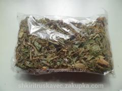 Tea grassy, Carpathian