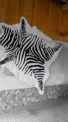 Шкура зебры, аргентинская, светлая
