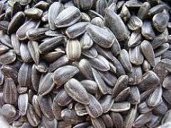 Семечки подсолнуха посевные, превозка, закупка, хранение зерновых и масличных культур