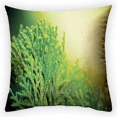 Design Freshness throw pillow, art. 2Pd-22-50х50_g