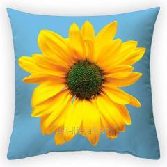 Design throw pillow Heavenly color, art.