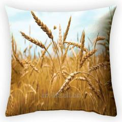 Design throw pillow Steppe miracle, art.
