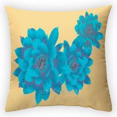 Design California throw pillow, art.