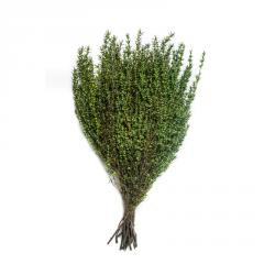 Grabiya is green ligh