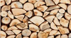 Firewood from an ash-tree on a shish kebab, Kiev