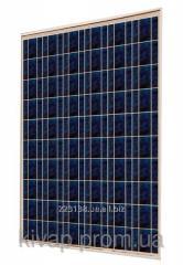 Фотоэлектрический модуль ABi-Solar SR-P636120, 120 Wp, POLY