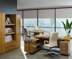 Zeus office