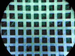 Sieve cloth (fabric sitovy, sieve polyamide, sieve