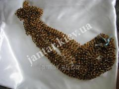 The polished beads from Code-156 amber