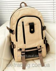 Backpack of Bag Clever Beige