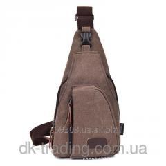 Man's bag dark brown backpack