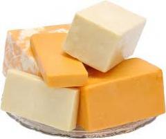 Cheese ( сыр )