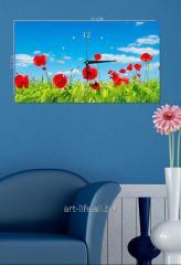 Picture hours 25х45, art. 3TC-108-W-2545
