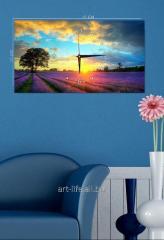 Picture hours 25х45, art. 3TC-109-W-2545