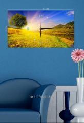 Picture hours 25х45, art. 3TC-110-W-2545