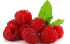 Raspberry organic (transition period)