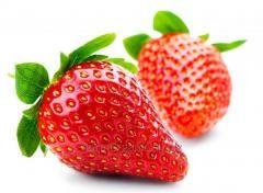 Strawberry organic (transition period)