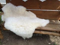 The skin is sheep white, 120х80 cm