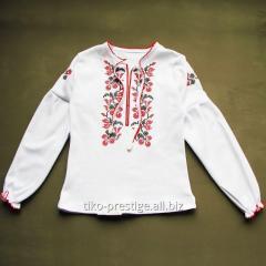 Vyshivanka for the girl, national clothes