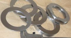 Rings 4 p 8.5x11 F105