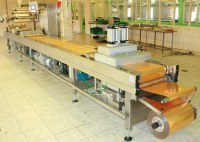The vacuum and thermoforming packing Multivac R530