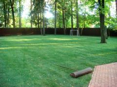 Lawns rolled (Kiev), a lawn rolled the price to