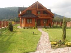 Classical lawn (Kiev), decorative lawn to buy a