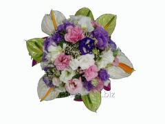 Bouquet congratulatory Velvet dream