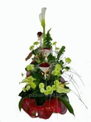 Bouquet congratulatory Green fairy tale