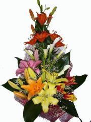 Bouquet congratulatory Games of paints