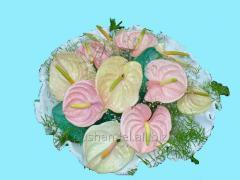 Bouquet congratulatory Fantastic life