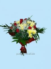 Bouquet congratulatory Colour of nigh