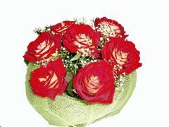 Bouquet congratulatory passion