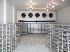 Chamber for storage of fish
