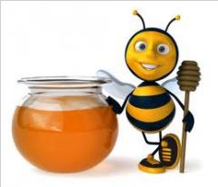 Мед пчелиный.Мед липовый. Мед, продукты пчеловодства, мед майский, мед цветочный, мед акация, мед липа, мед гречка. Прополис. Пчелиная пыльца. Маточное молоко. Пчелиный яд. Подмор (тело пчелы).
