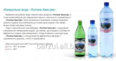 Glade of a Kvasov mineral water