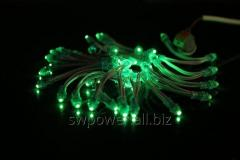 Light-emitting diodes of fast installation green