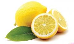 Lemon srub