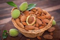 Almond srub
